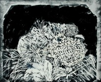 'Untitled Vll' ink on paper, 19 by 15 inches, 2010 (sold)
