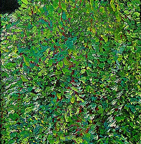 'Foliage' oil on canvas, 20 by 40 inches, 2010 (sold)