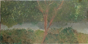 'Landscape ll' oil on canvas, 18 by 30 inches, 2011 (sold)